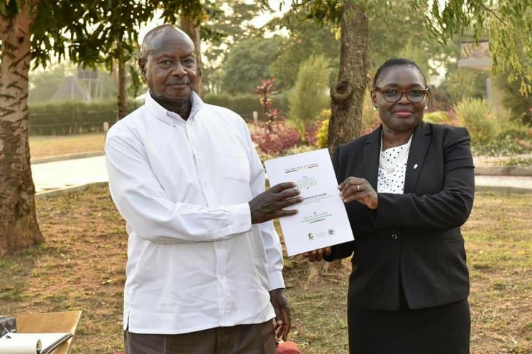 M7 RECEIVES LAND REPORT